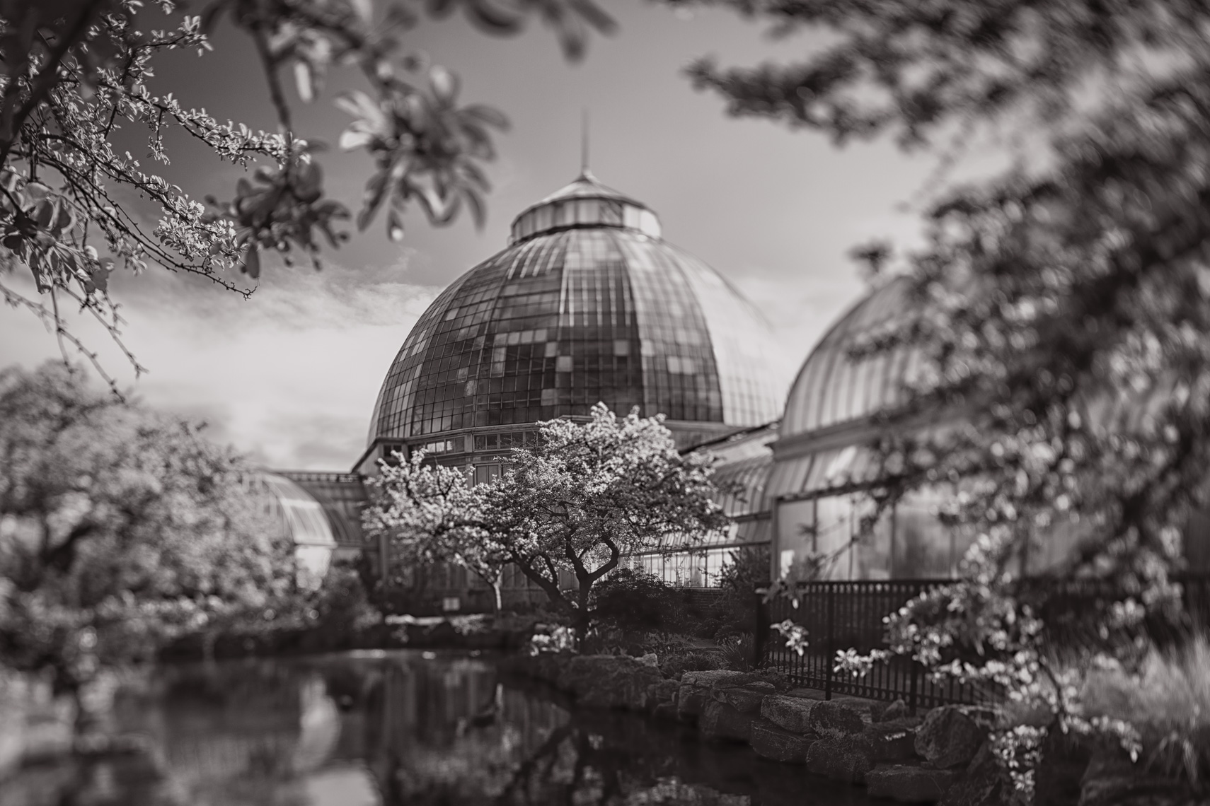 Detroit_BelleIsle-3100-Edit.jpg