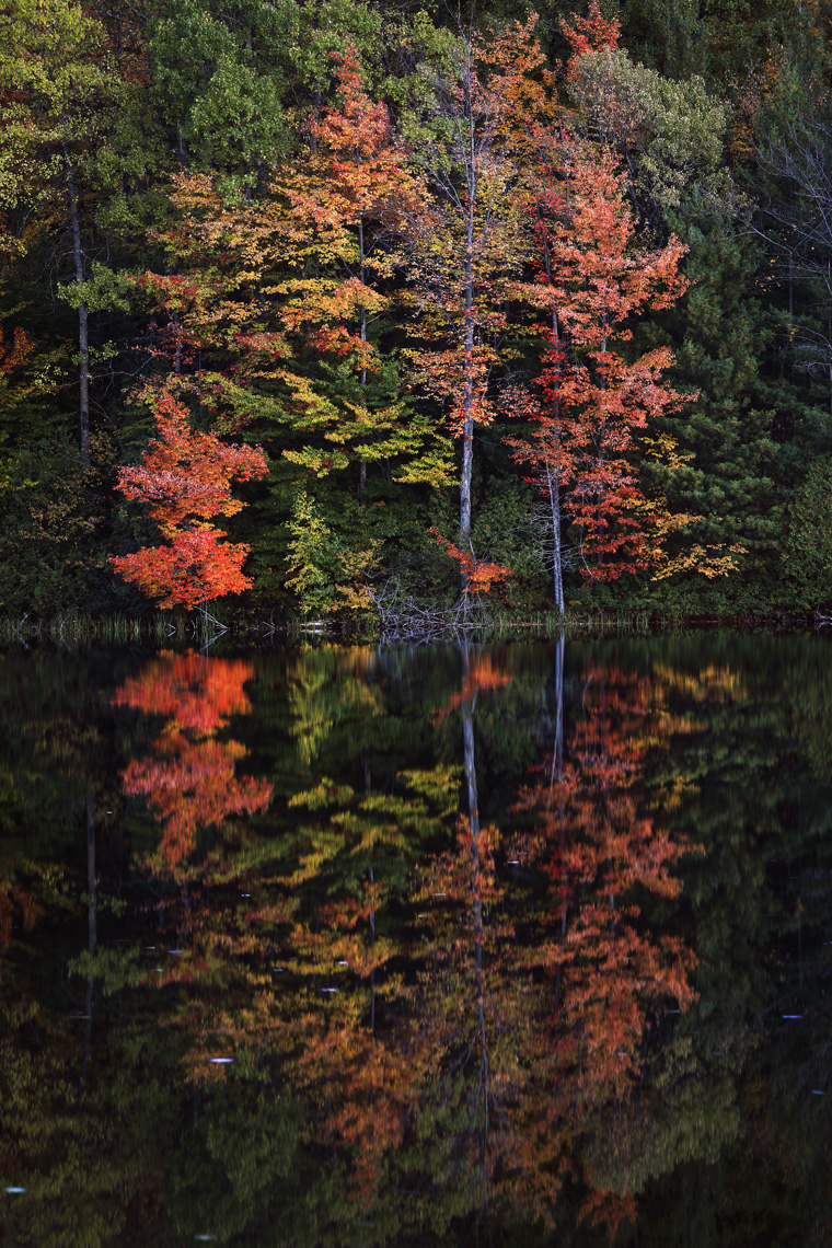 Fall_PerchLake_09_001_W.jpg